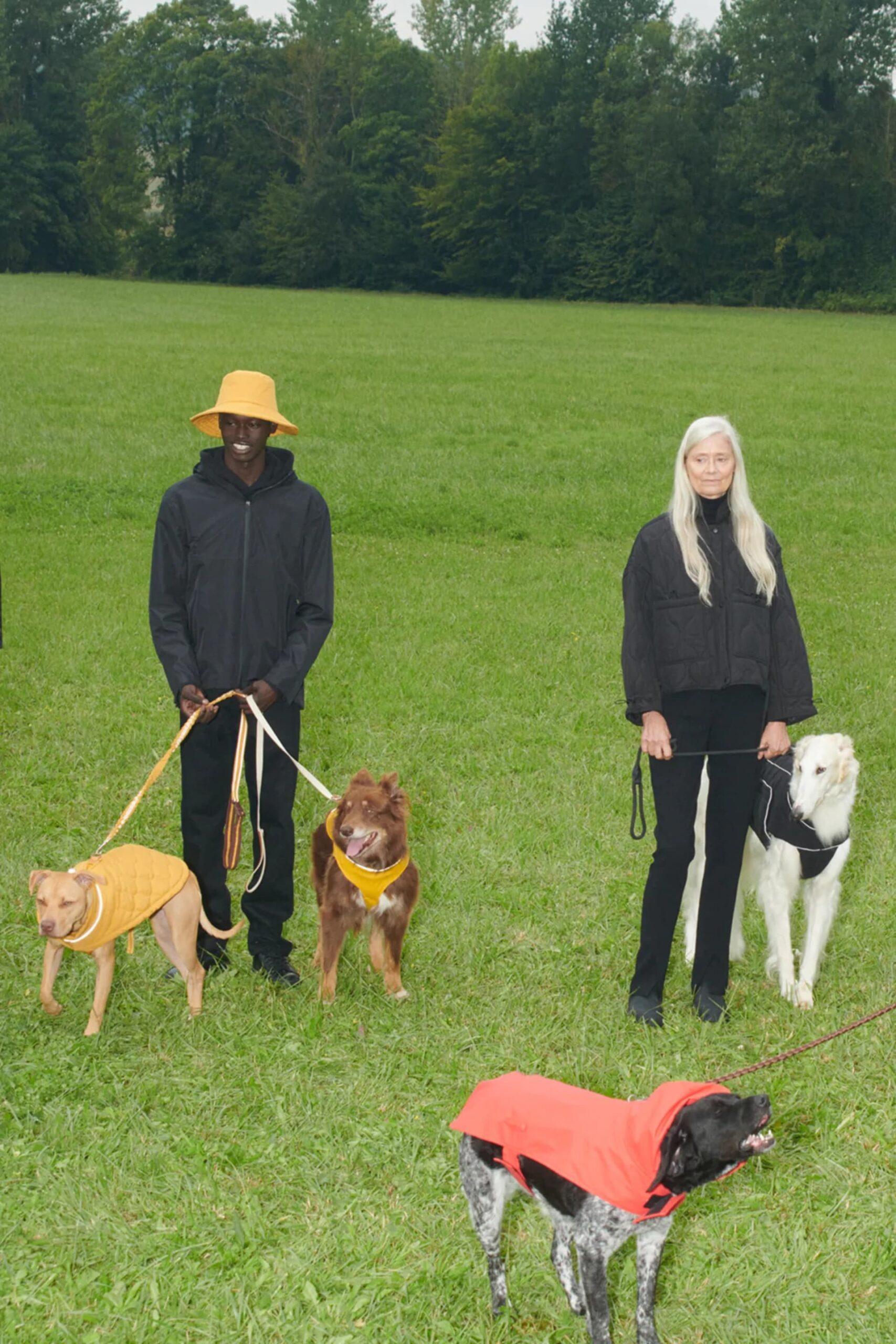 Zara Pet, lanzó su nueva colección de ropa para mascotas